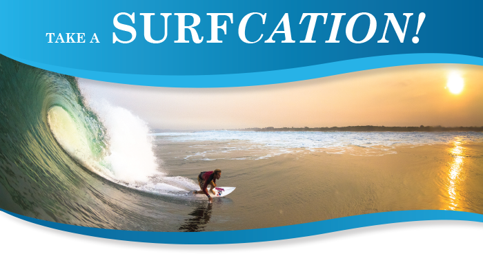 Landing-Surfcation